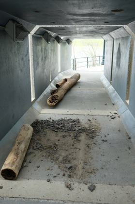 These logs from the Ottawa River were left by recent spring flooding. This pedestrian tunnel behind the Parliament Buildings is two metres above the usual river level.